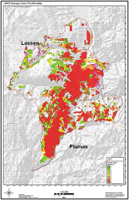 fir severity map
